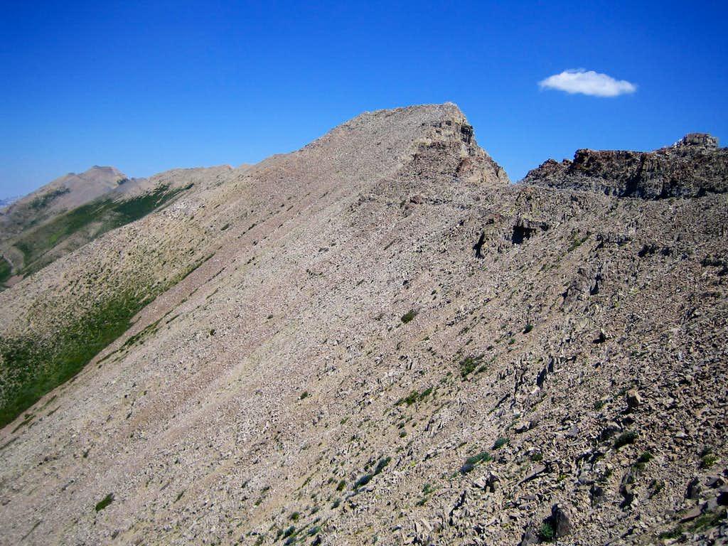 Timp Ridge