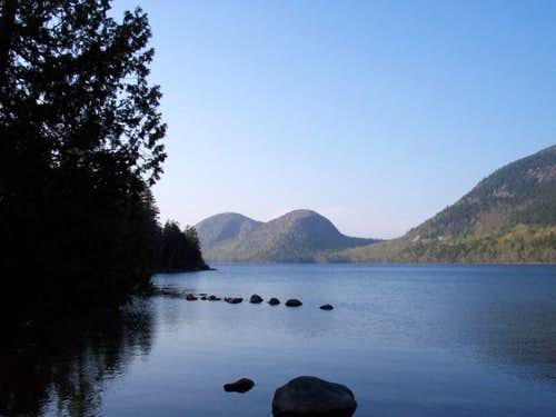 The Bubbles