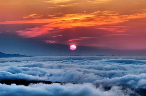 Cardigan Sunrise