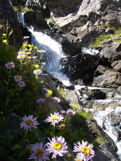 Waterfall and wildflowers above Mohawk Lake