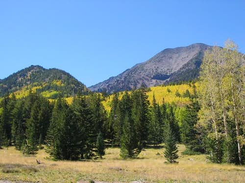 Humphreys Peak from the Inner Basin