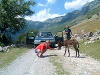 Albania Road Crew '06 on tour
