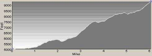 Profile of Mt Jerusalem Route