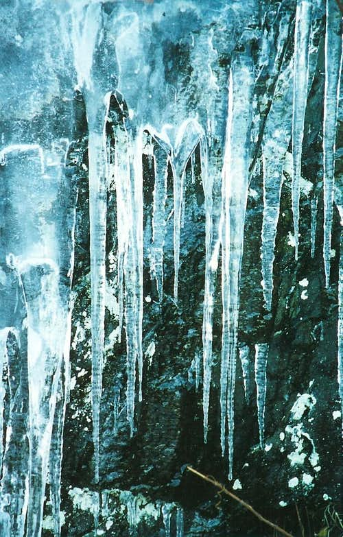 Icicles beside Skyline Drive