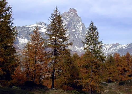 Il monte Cervino - Matterhorn (4478 m)