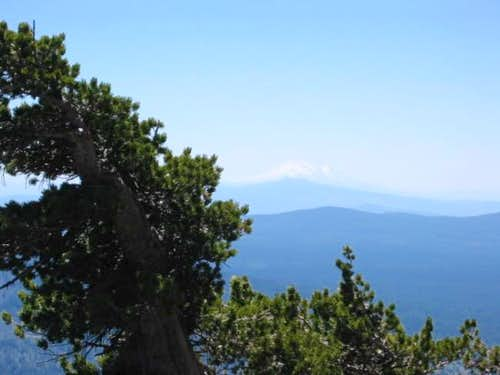 Mt. Shasta to the south seen...