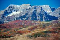 Timp in Autumn '06