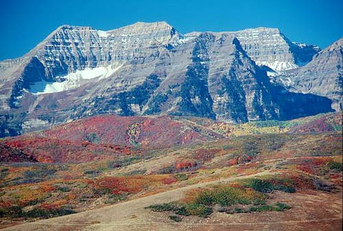 Timp in Autumn '06
