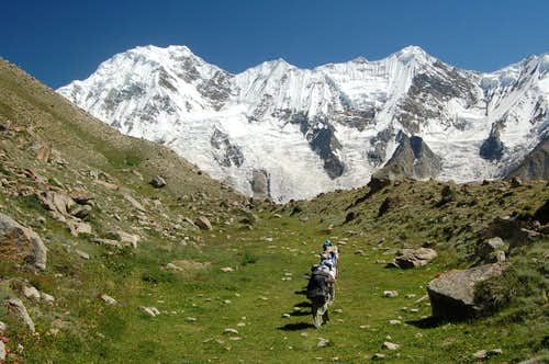Porters trekking through the many meadows between the Pumari Chhish and Jutmo Glaciers