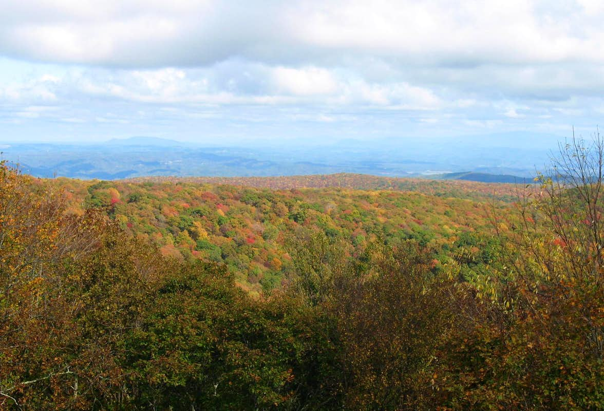 High Knob - East View
