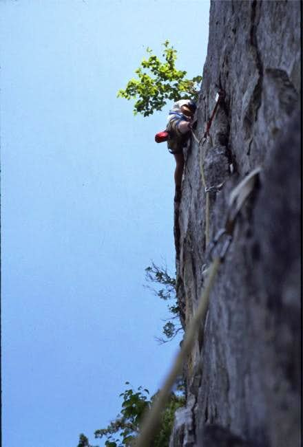 Banana on west face