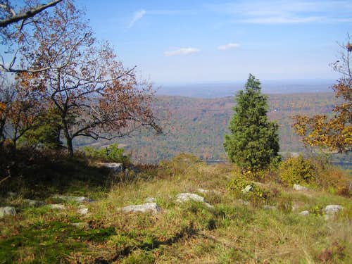 view along trail near summit of Mt. Mohican