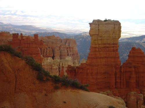 Rocks in Bryce Canyon