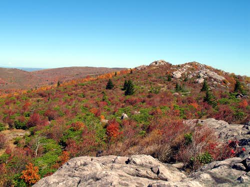 Wilburn Ridge in Autumn