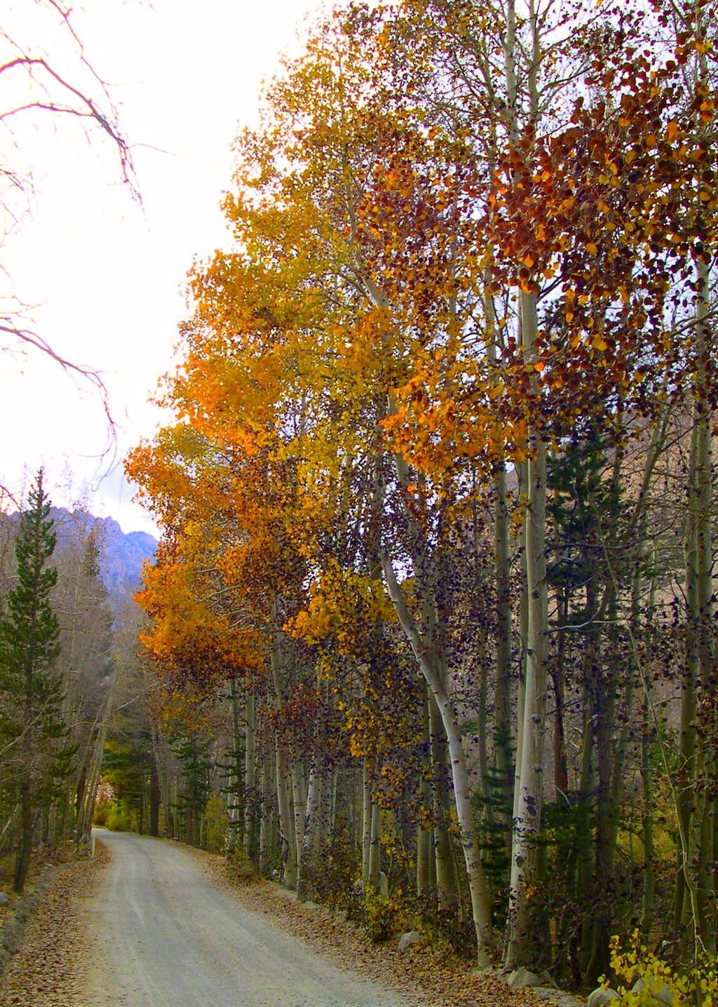 Near the North lake trailhead