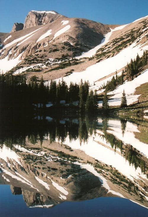 Wheeler Peak Reflection