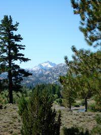 Tower Peak from the Leavitt Meadows trailhead