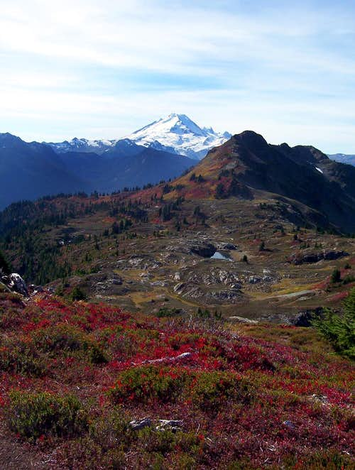 Mount Baker and Fall Colors
