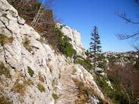 Trail around Rossijevo hut towards Zavizan