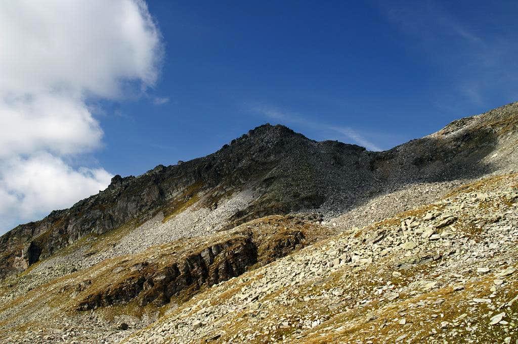 Friedrichshöhe (2713m)