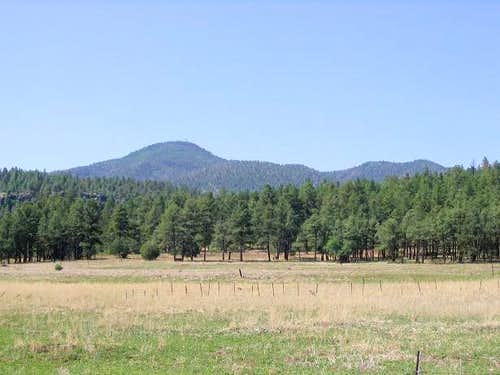 Bill Williams Mountain from City of Williams