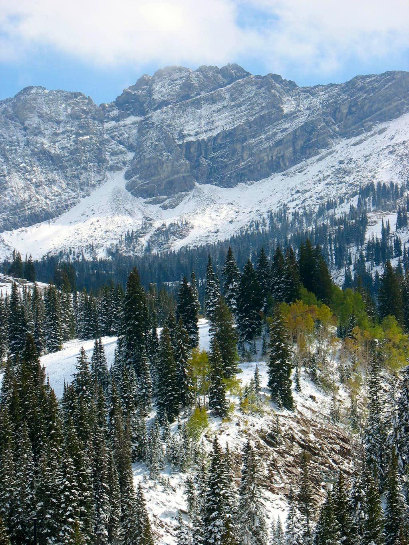 Fresh snow at Albion Basin