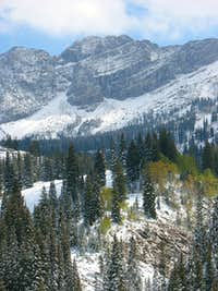 Fresh snow at Albion Basin