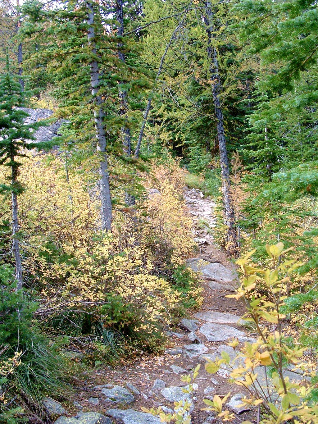 Trail to Baker Point