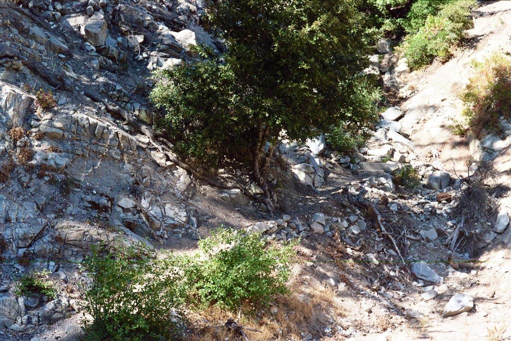 San Gabriel Peak Trail