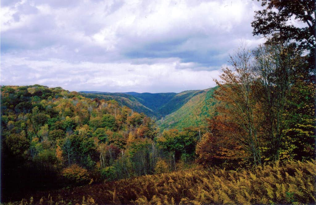 PA Grand Canyon in Autumn