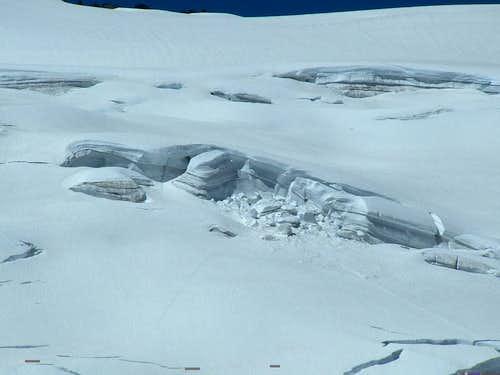 Walrus Glacier