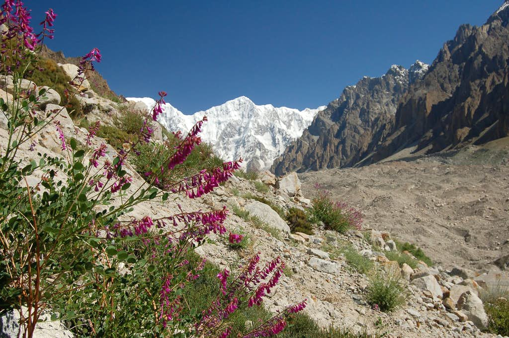 Southern face of Bularung Sar (7200m)