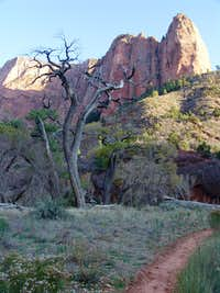 Shuntavi Butte, Kolob Canyons, Zion National Park