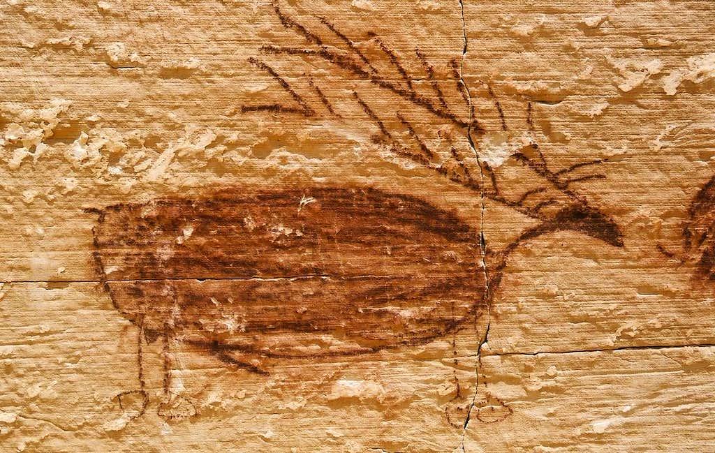 Elk Pictograph