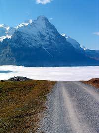 Eiger from Alp Grindel