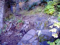 Rocky switchback on East Ridge Trail.