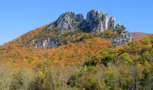Autumn at Seneca Rocks