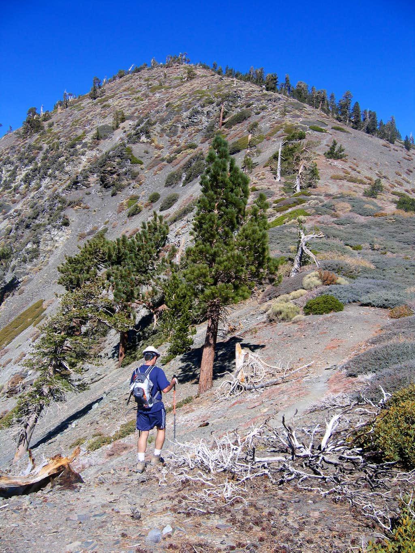 View of Pine Mountain