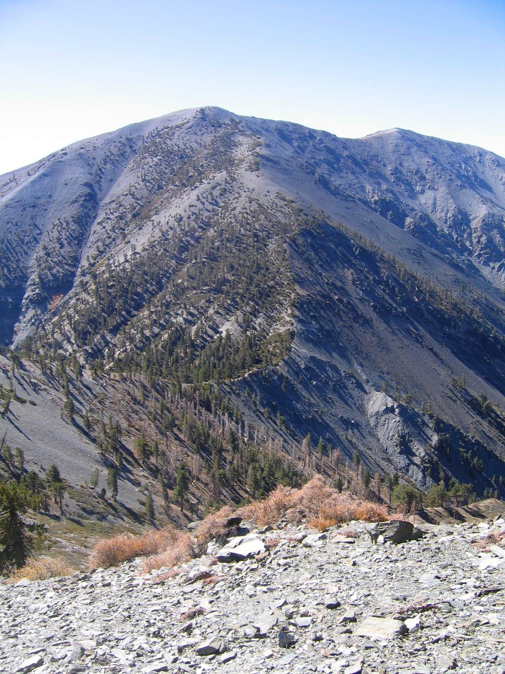 View of North Backbone and Mount Baldy