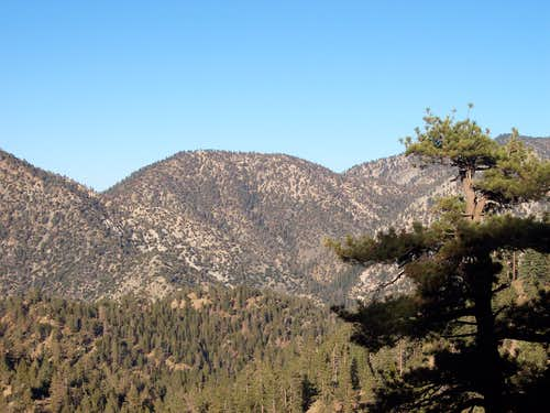 Pallett Mountain