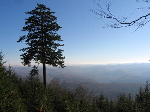 View from Gaudineer Knob