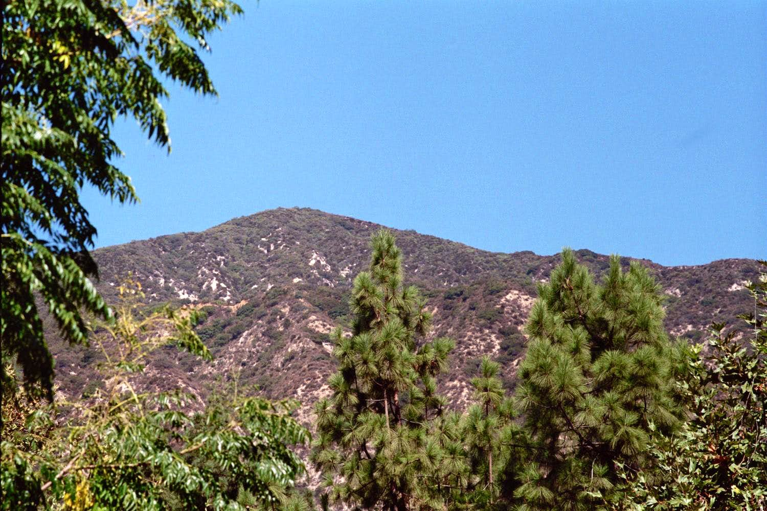 Bailey Canyon Park