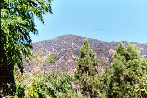 Jones Peak (3,375\') in San Gabriel Mtns.