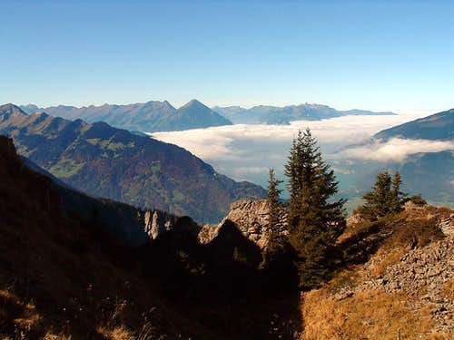 Niesen and Thunersee from Oberberghorn