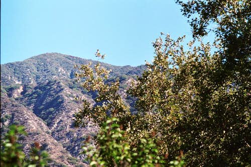 Jones Peak in San Gabriel Mtns.