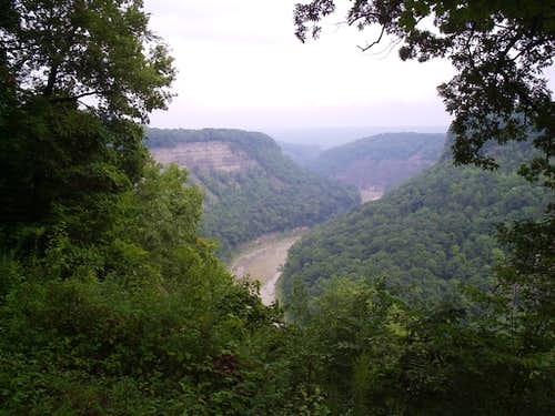 West Rim view into the Genesee River Gorge