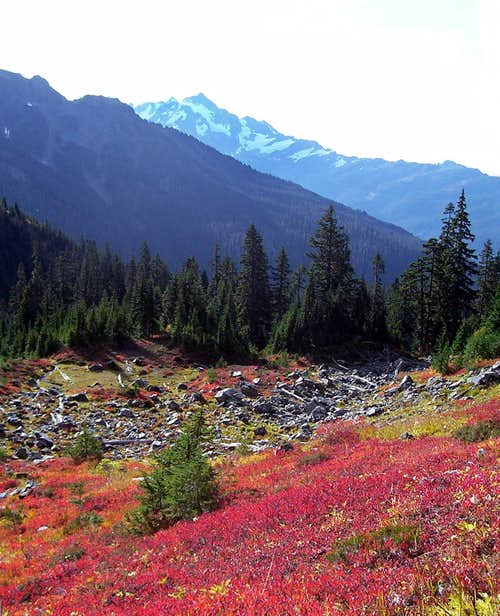 Mount Shuksan and Fall Colors 4