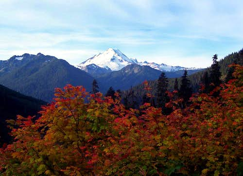 Mount Baker and Fall Leaves