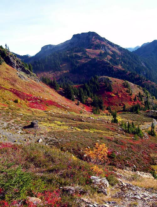 Yellow Aster Butte Trail