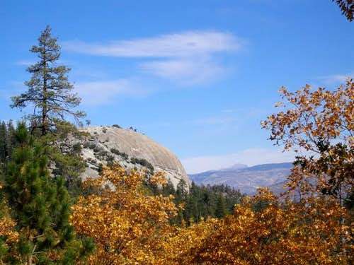 Dome Rock framed by autumn-hued Black Oaks